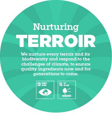 Nurturing Terroir